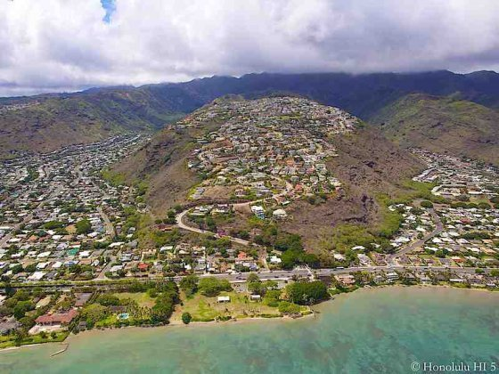 thumb1_hawaii-loa-ridge-homes-aerial-photo